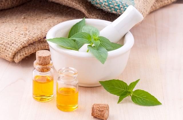 Tout savoir sur l'huile essentielle d'arbre à thé